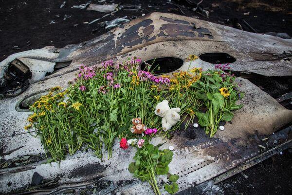 Le crash du MH17 en Ukraine au menu d'entretiens Poutine-Rutte - Sputnik France