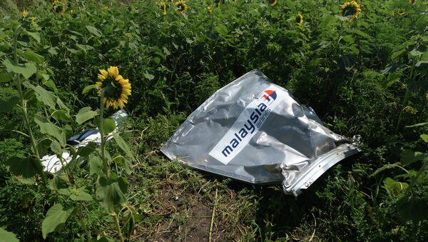 Crash du vol MH17: Washington en sait plus qu'il ne le prétend (homme politique US) - Sputnik France