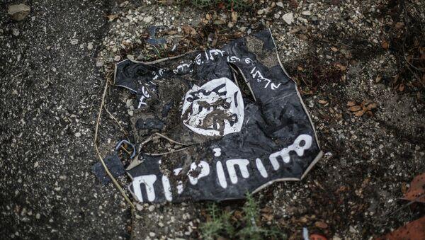 Etat islamique - Sputnik France