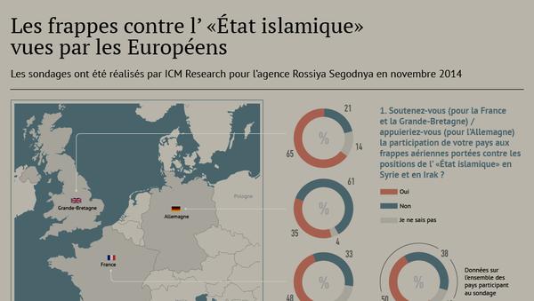Lutte contre l'EI: les frappes aériennes vues par les Européens - Sputnik France