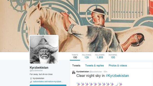 Screenshot de la page du Kyrzbékistan en Twitter - Sputnik France